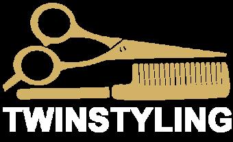 Twinstyling Logo v1.0 Website